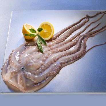 Fagyasztott halak, tenger gyümölcsei